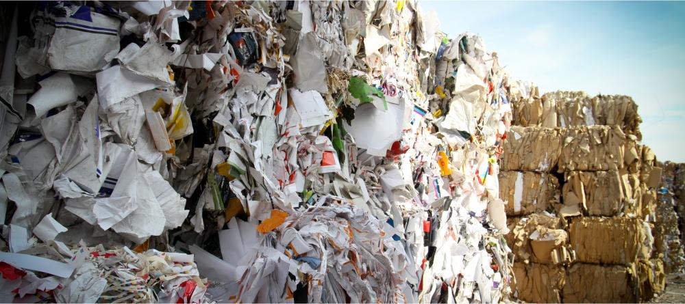 sivun kuva 5 tapaa joilla Suomen kilparatsastuksen kannattajat auttavat ympäristöä Jätteen kierrätys - 5 tapaa, joilla Suomen kilparatsastuksen kannattajat auttavat ympäristöä