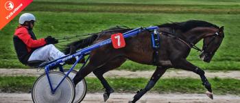 Onko hevosravikilpailu hyväksi Suomen taloudelle?